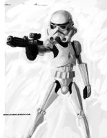 Just a Stormtrooper by DevonneAmos