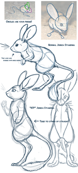 Jerboa Sketches for VibrantMuse by KasaraWolf