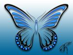 Butterfly Six by Democris