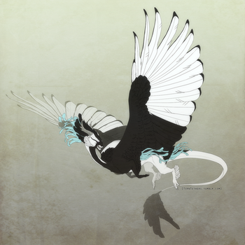 Magpie's flight by TornTethers