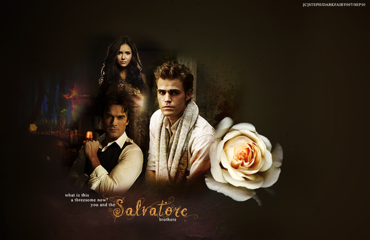 Love Triangle: With The Salvatore Brothers by DarkFairy007