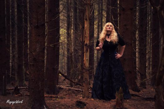 Into the woods by MagnysWork