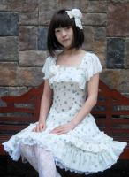 Infanta Lace Up Printed Cotton Lolita Dress by miccostumes