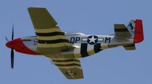 P51d MUSTANG SUSY red tail stunning by Sceptre63