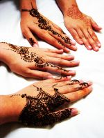 sisterhood of henna. by novelnovel