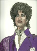 Prince Colour by donna-j