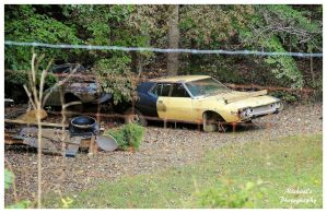 An AMX Wasting Away! by TheMan268