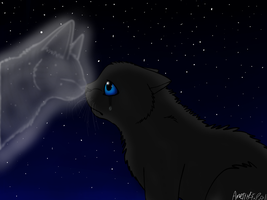 Crowfeather's Sorrow by SilverMoonNightMist