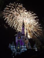 Cinderellas Castle at Night:23 by CanisCamera