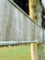 Morning Dew on the Fence by BlutEisen
