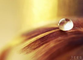 Golden droplet ... by aoao2