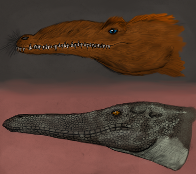 All todays: the mystery of crocodile skin colored by Dragonthunders