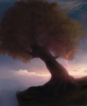Tree by CoreyGallagher