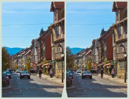 Historic district of Wernigerode HDR X 3D by zour