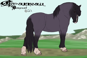 Import 029 by AutumnCreekFarms