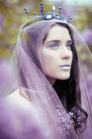 FairyTales 2 by DmajicPhotography