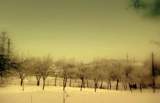 first snow by NaTuRe-In-My-BlooD