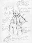 Skeletal Hand by sashas