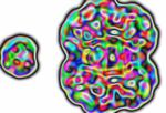 Colorful MRI by tainia