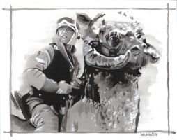 Luke on Tauntaun by sarahwilkinson