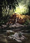 Tiger 2014 by SalamanDra-S