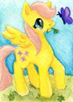 ATC Filly Fluttershy's Lucky Day by rayechu