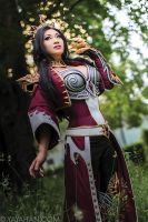 Diablo 3 Wizard II by yayacosplay