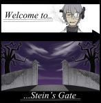 Stein's Gate by Chinnaru