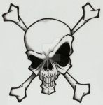 Skull and Crossbones by Ashes360