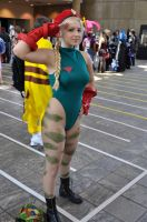 Otakon 2010 - Cammy Salutes by WashuuOtaku