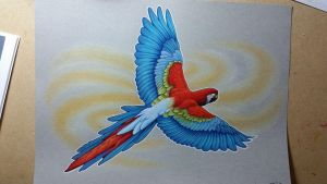 Fly Birdie Fly by KYLE-CHANEY