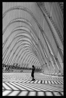 lines... by p4vlos