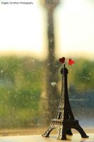 From Paris with Love by whiterabbit15