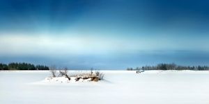 minus 15 degree Celsius by rattattart