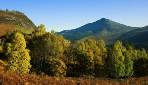 Schiehallion, Scotland III by younghappy
