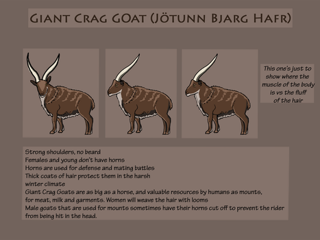Giant Crag Goat(Jotunn Bjarg Hafr) Reference Sheet by Freeflier181