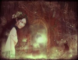 Entrance to my Secret World by judith
