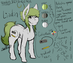 Liadin's reference sheet. by SirMiaow