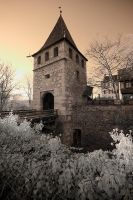Castle Laufen by Osiris81