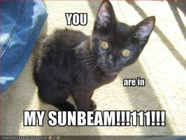 Sunbeam by cianna