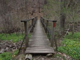 Bridge to the Forest by mysticdragon666