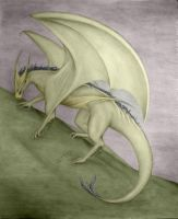 My Dragon Colorfied by sarlume