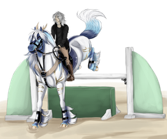 Fuyu show jumping training by WolfsMoon1