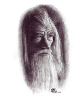 Gandalf by ktalbot