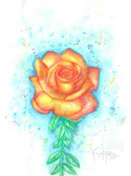 Rose in watercolors by Katney