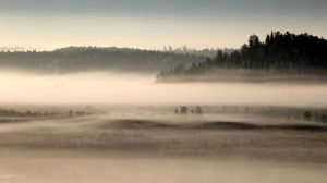 17.5.2016: May Morning Mists by Suensyan
