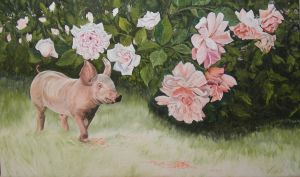 Swine and roses by tempelziege