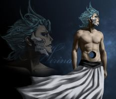Grimmjow by Airina