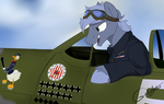 Polish 303 Fighter Squadron/Zumbach 'Donald Duck' by grethzky