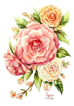 Camellia Flower water color by leejia